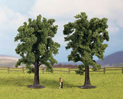HO Scale Beech Tree