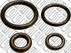 Fuel Injector Seal Kit GB Remanufacturing 8-001