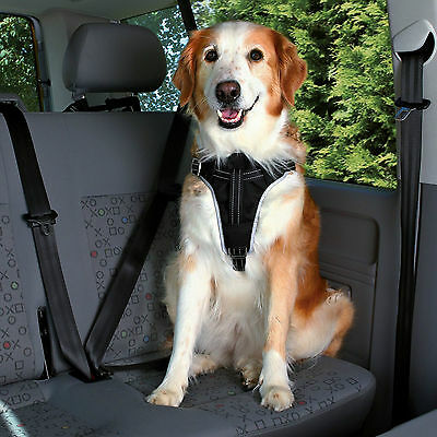 Black Protect Harness for Car Travel & Walks Reflective Padded Dog Harness M