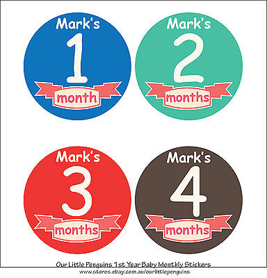 Personalised Monthly Baby Stickers, Milestone Stickers, Baby Shower Gift_B017