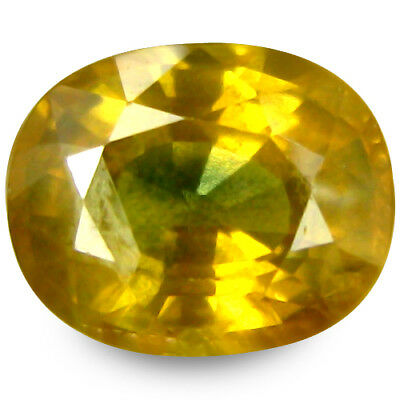 2.775Cts Splendid Top Luster Yellow Natural Sapphire Oval Gemstones See Video