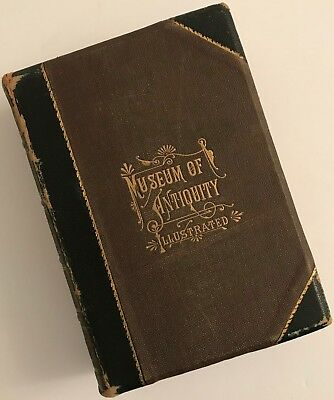 MUSEUM OF ANTIQUITY ILLUSTRATED A Description of Ancient Life Yaggy/Haines 1881