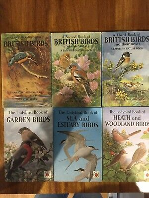 vintage set of  6 ladybird books on birds