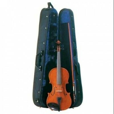 Palatino VN-850 Dolce Violin Outfit, 4/4 Size Multi-Coloured. Shipping Included