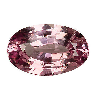 0.770Cts MARVELOUS LUSTER PINK NATURAL SAPPHIRE OVAL LOOSE GEMSTONES SEE VIDEO