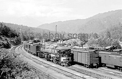 SOUTHERN PACIFIC - Fine 8x10 B&W PRINT: Cab-forward 4225 at Dunsmuir yard 8/55