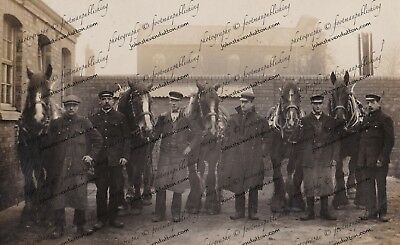 WILLENHALL BHR STATION CATAGE STAFF HORSES NEW 6 x 4 Photo 1914 RARE