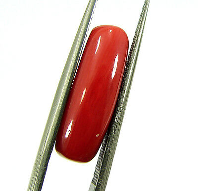 Lab Certified 4.42 Ct Natural Capsule Cabochon Red Coral Loose Gemstone (98648)
