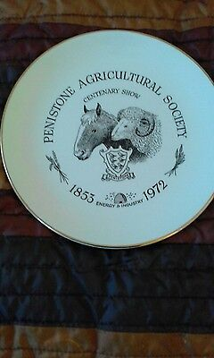 Penistone Agricultural Society Show Plate