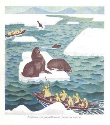 ALASKA Inuit Eskimo Walrus Hunt, Beautiful 1940s Children's Art Print