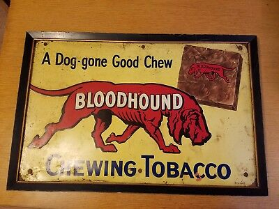 Vintage Original Framed Tin Litho Sign of Bloodhound Chewing Tobacco WOW!!