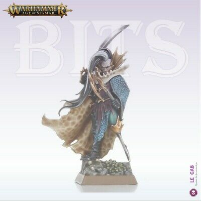 Bits Aelves Black Ark Fleetmaster Dark Elves Warhammer Battle Aos