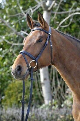 (Black / Black, EXFS - combined noseband) - Stübben Snaffle Bridle Waterford