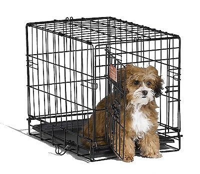 Dog iCrates Pet Crate iCrate Single Door Home Training and Travel Series
