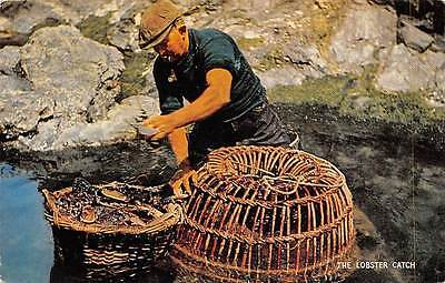 Manual labour fisherman pipe, The Lobster Catch, oysters, clams, cockles