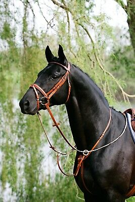 (havana, Pony - silver) - Stübben Running Martingale. Delivery is Free