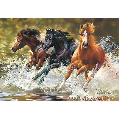 Acrylic Painting By Numbers Kit Canvas Three Horses 50*40cm S5 8179 AU STOCK