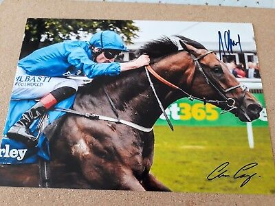 "Photo,July cup 2017 ""HARRY ANGEL""  signed"