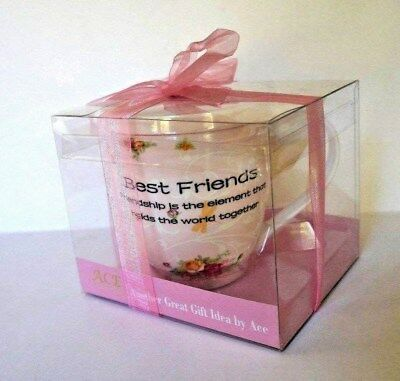 "BEST FRIENDS COFFEE MUG TEA CUP PINK HAND MADE NEW  BONE CHINA 4.5"" Tall Boxed"