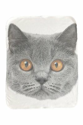 NEW Baby Cat British Shorthair Baby Blanket Baby