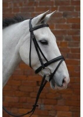 (Black, Cob) - HY Padded Flash Bridle with Rubber Grip Reins. Free Shipping
