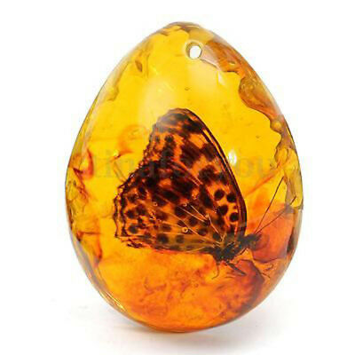 Beautiful Amber Butterfly Insects Stone Pendant Necklace 5*4cm 0.8'' Thickness#A