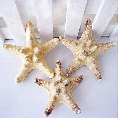 2/10Pc Natural Beach Starfish Sea Star Shell Beach Craft Home Aquarium Decor 4CM