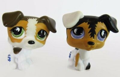 Littlest Pet Shop LPS #803 #804 Two Rare Jack Russell Terrier Dogs  Moon Eyes