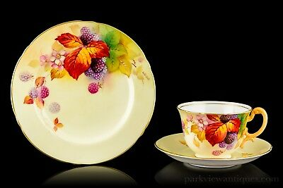 Royal Worcester Fruit Painted Trio, Cup, Saucer & Plate by Kitty Blake C. 1935