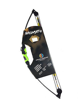 ASD Wildcat Kids / Child Compound Archery Bow 12Lbs Kit ** Show Room Model 005**