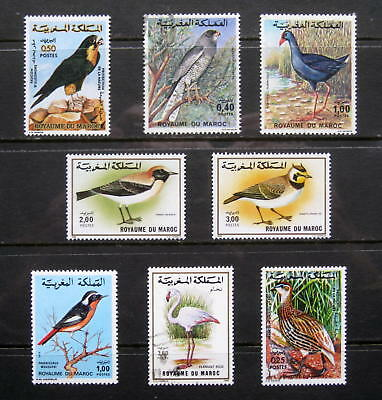 MOROCCO Bird Stamps. Quality selection of LMM & Used