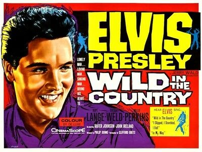 Elvis Presley Wild in the Country POSTER 1961 Rare Large