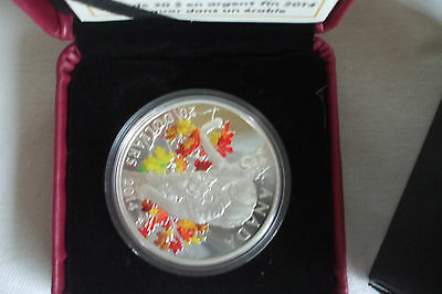 RCM 2014 $20 Cougar in Tree (Proof) Silver Commemorative
