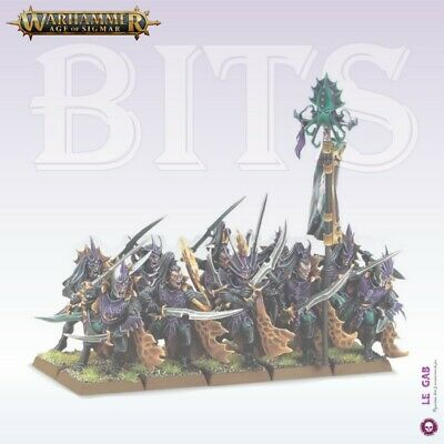 Bits Aelves Black Ark Corsairs Dark Elves Warhammer Battle Aos