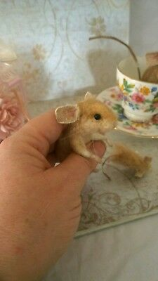 Needle felted mother and baby  mouse, animal ooak, hand made