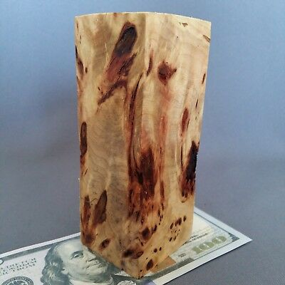 Burl WOODen Poplar Cottonwood Block Blank Knife Handle Scale Pistol Grip № 97