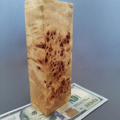 Burl WOODen Poplar Cottonwood Block Blank Knife Handle Scale Pistol Grip № 95