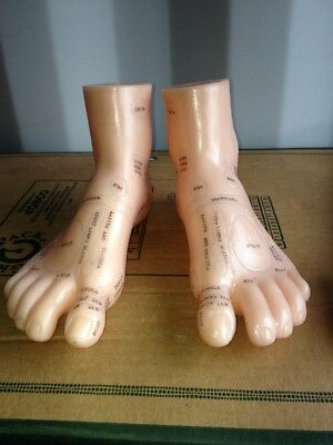 Pair Feet For Acupuncture Training Chinese