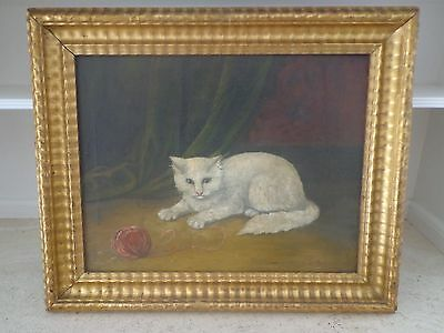 19Th Century Antique Oil Painting Of A Cat With A High Quality Gilt Frame