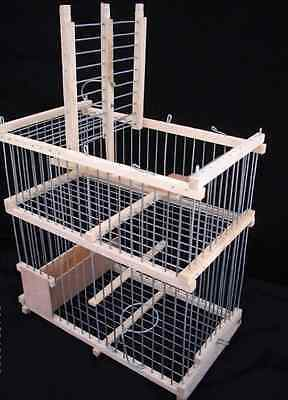 Cage with one Trap  // Trap Birds // Hunting