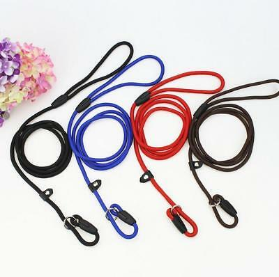Cheap Nylon Rope P Chock Obedience Leash Dog Training Slip Leads 4 Color 3 Sizes