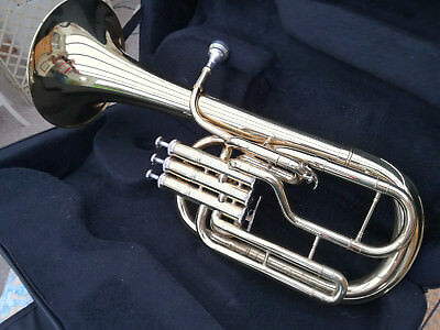 Tenor Horn in custom hard case. Good condition used 1 year by student