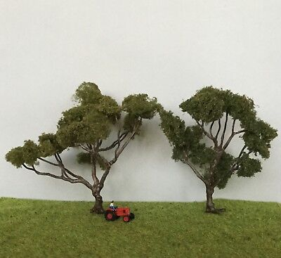 N Scale Coolabah Gum Trees x 2