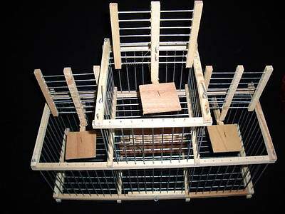 Wooden Birds Traps // Trap Cage with 3 Traps // for birds Cage