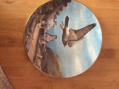 2Royal Doulton Collecters Plates