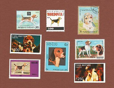 Beagle dog postage stamps set of 8