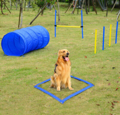 Pet Training Equipment Agility Set Obedience Hurdle Tunnel Lunch Box Weave Poles