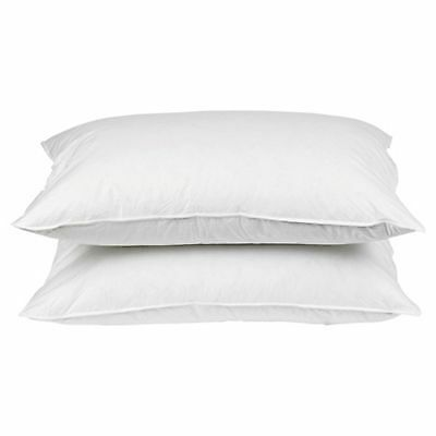 Firm Anti Allergy Pillow, 2 Pack