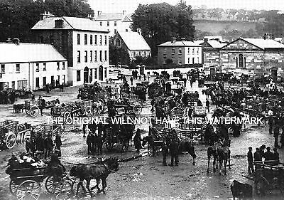 Bantry Fair Day Co Cork Ireland 1905 Antique Print Mounted Ancestry & History