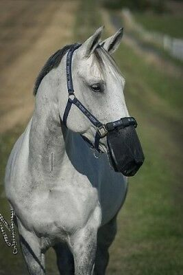 (FULL) - Horse Nose Protector, Fly Protection Net, Fly Nose Protector, Help
